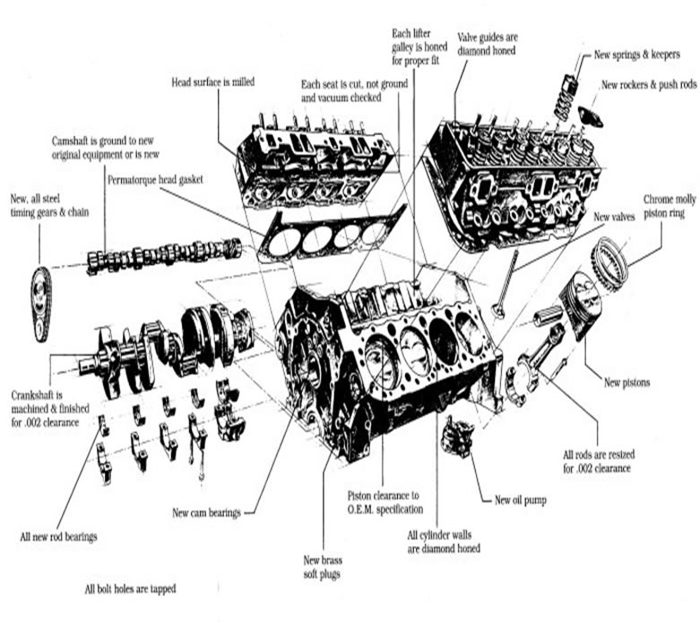 Wiring Diagram For Chevy 350 Engine : Lt engine diagram get free image about wiring
